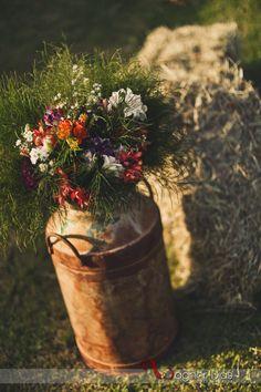 Folk Wedding…