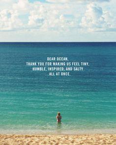Dear Ocean ...