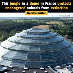This tropical dome in France is protecting 200 endangered species from extinction. Zoo de Beauval in Saint-Aignan, France houses some of the world& most… 13 commenti su LinkedIn Rare Species, Endangered Species, Sea Cow, Komodo Dragon, Green Business, Climate Change, How To Stay Healthy, Mammals, Habitats