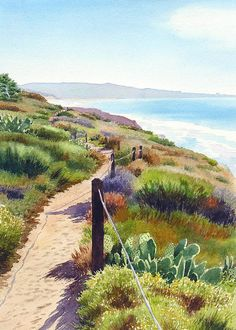 Mary Helmreich WATERCOLOR Torrey Pines Guy Fleming Trail Painting