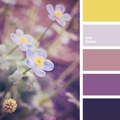 Wonderful range filled with a special charm. Deep, discreet shades of purple, the color of masala, blackberry creates attractive and impressive trio. Scheme Color, Colour Pallette, Colour Schemes, Color Patterns, Color Combos, Paleta Pantone, Paint Color Palettes, Color Balance, Design Seeds