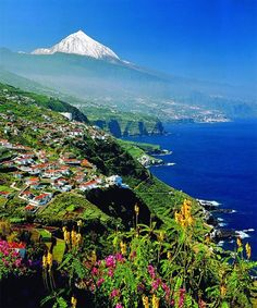 Tropical View of Canary Islands - Atlantic Ocean