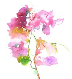 Series 4 Flower 3 Bouganvilla Painting 11 x 14 on Rives, watercolour paper, France. Frame Size Mat Opening Image Size 8 x 10 4.5 x 6.5 5 x