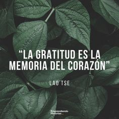 25 Frases de agradecimiento para demostrar tu gratitud con la vida Positive Mind, Positive Thoughts, Real Life Quotes, Me Quotes, Universe Quotes, Clever Quotes, Thoughts And Feelings, More Than Words, Spanish Quotes