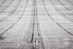 """Desde La Cabina Roja / ByN Fotógrafos queremos  agradecer a #wedphotospain por haber seleccionado tres de nuestras fotografías para la selección anual """"Tus fotógrafos 2017"""" @lacasadelosfotografos  #tusfotografos2017 #lacabinaroja #fotografosbodaasturias #bodasasturias #weddingphotography  #destinationwedding"""