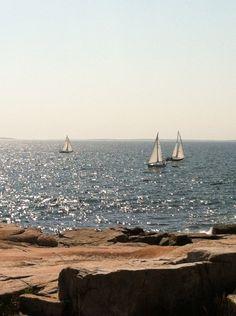 Schoodic Point, Maine/Beautiful!!!