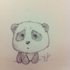 Cute panda- @khuon nguyen nguyen nguyen | Webstagram
