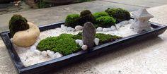 Moss of zen #moss #mymoss #naturemoss #seemymoss_here #zen #zengarden #minizengarden #miniature #myzen