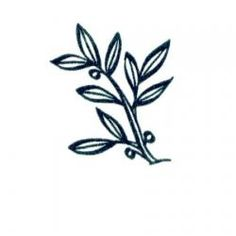 Extend the Olive Branch in a note card!