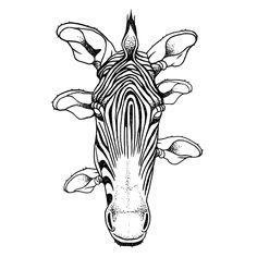 Zebra fon Available for tattoo  romanmateutsa@gmail.com