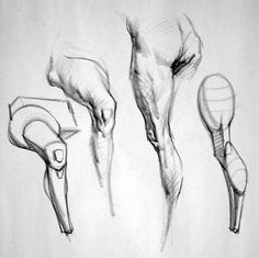Learn To Draw People - The Female Body - Drawing On Demand Body Sketches, Anatomy Sketches, Anatomy Drawing, Drawing Sketches, Drawing Legs, Body Drawing, Life Drawing, Human Figure Drawing, Figure Drawing Reference