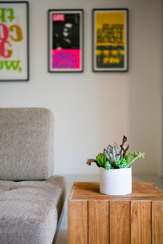 Love the contrast of the subtle succulents and the bright neon posters.