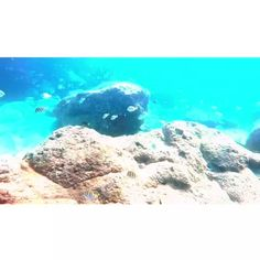 It's only water. With Taylor Fischer #gopro Hawaii Vines, GoPro