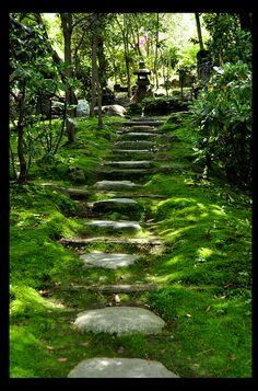 Hillside garden path