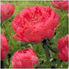 Cross Stitch Coral Sunset Peonies Pattern Design Chart Garden Flower Nature Home Decor PDF Digital File Instant Download by theelegantstitchery on Etsy