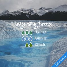 Invigorating Breeze - Essential Oil Diffuser Blend