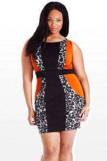 Plus Size On the Hunt Colorblock Plus Size Dress