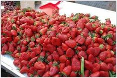 Strawberry Fields Forever, Agriculture, Garden Plants, Salsa, Raspberry, Fruit, Ethnic Recipes, Food, Gardening