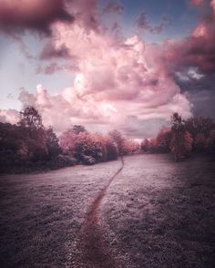 """artofvisualscollective: """"Amazing Photography by Juuso Hämäläinen """" Rose Gold Aesthetic, Sky Aesthetic, Fantasy Art Landscapes, Visit California, Weekend Fun, Sunset Photos, Aesthetic Backgrounds, Nature Pictures, Aesthetic Pictures"""