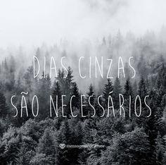 Dias cinzas são necessários. #mensagenscomamor #frases #diasnublados #momentos #vida