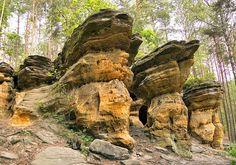 """Rezerwat """"Piekło"""" Jednym z najmniej znanych regionów Gór Świętokrzyskich jest Ziemia Konecka. Jej ozdobą jest rezerwat """"Piekło"""" - grupa ciekawych skałek piaskowcowych, otoczonych ładnym lasem, który leży nieopodal Niekłania, przy drodze z Odrowąża do Chlewisk. My Heritage, Krakow, Rocks And Minerals, Country, City, Places, Nature, Pictures, Travel"""