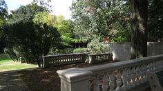 curtis hall arboretum Curtis Hall, Outdoor Furniture, Outdoor Decor, Engagement Photos, Home Decor, Decoration Home, Room Decor, Engagement Pics, Home Interior Design