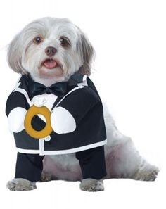 Puppy Love-Groom | California Costumes