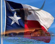 by mshDigitalArt on Etsy Texas Texans, Texas Longhorns, Waco Texas, Austin Texas, Republic Of Texas, Texas Forever, Loving Texas, Texas Flags, Texas Pride