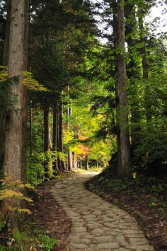 Nakasendo, Japan, with stone path