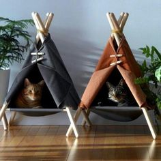 hippie room decor 716353884459868057 - Tipi pour chat déco DIY Source by Cat Room, Pet Furniture, Cheap Furniture, Rustic Cat Furniture, Furniture Ideas, Homemade Furniture, Diy Stuffed Animals, Crazy Cats, Cats And Kittens