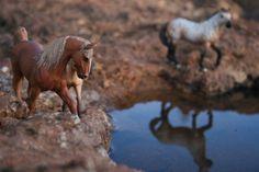 schleich chevaux | Schleich Horses | Up to 20% off Schleich | Free shipping!