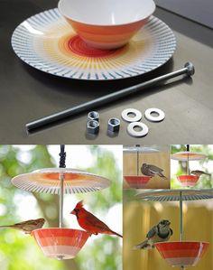 comedero de aves