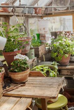 Like the shelf above in this greenhouse for storing small potted plants and empty pots.