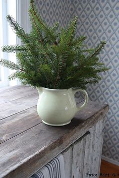 I do this each year to bring in the scent of fresh pine..as use artifical trees...