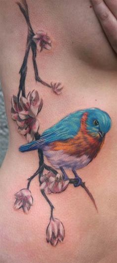 Google Image Result for http://zhippo.com/TattooInspirationHOSTED/images/news/bluebird-tattoo.jpg