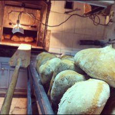 Alentejo bread, Portugal