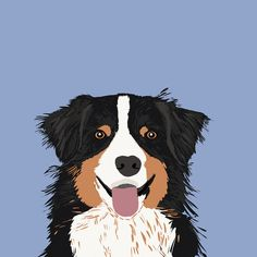 "East Urban Home Australian Shepherd III by Pet Friendly Graphic Art on Wrapped Canvas Size: 26"" H x 26"" W x 1.5"" D"