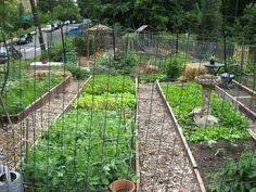 Glover Park Community Garden