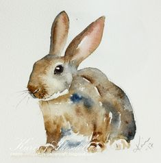 Peppermint Patty's Papercraft: Sunday Watercolors: Rabbits For more info: I share my creative projects here: https://www.instagram.com/peppermintpatty42/and on my blog:http://peppermintpattys-papercraft.blogspot.seand on pinterest; https://www.pinterest.se/peppermint42/my-watercolors/