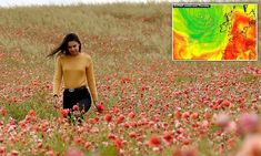 Tropical heatwave to hit Britain with 90F highs by Wednesday Daily Mail News, European Map, Uk Weather, Weather Warnings, Northern England, The Day Will Come, Days Of The Year, Summer Solstice, Thunderstorms