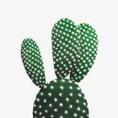 CACTUS Art Print green Mickey Mouse Cactus Poster - Wall Art #cactus #mickeymousecactus #cactusart #art #greencactus #cactusposter #cactustrend #green #trend #opuntia #wallart #poster #bunnyearcactus #polkadot