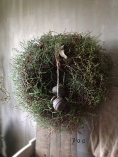 - Lilly is Love Natural Christmas, Simple Christmas, Outdoor Christmas Decorations, Tree Decorations, Fresh Wreath, Succulent Wreath, Jingle All The Way, Christmas Items, Cozy Living