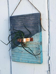 Modern Farmhouse - FREE SHIPPING!!! Gray Barn Wood and Aqua Stained Wooden Plaque with Copper and 1 Air Plants. 7 inches X 5 inches The Perfect Gift! All pieces are created based on the natural design of each individual piece of wood You will receive the one-of-a-kind wooden plaque