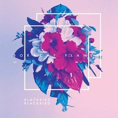 Blackbird Blackbird - Boracay Planet   #dreampop #chillwave #electronic #spotify #music