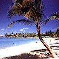 Maui Beach Picture