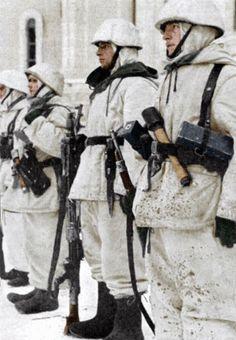 Leningrad Front 1943
