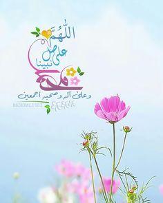 DesertRose,;,Allahumma Aameen,;;