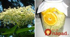 Kvety bazy sú hotovým zázrakom, ktorý by nemal vo vašej domácnosti chýbať. Zvyšujú totiž obranyschopnosť organizmu, pri horúčke a infekcii podporujú potenie a pomáhajú pri silnom zahlienení, kašli a zápaloch čelových dutín. Dokážu však ešte