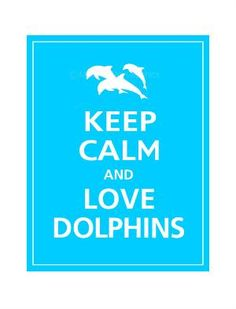 Love dolphins! Never are there any dolphins that have a tiny of ugly!  - Stop the Dolphin and Orca Slaughter NOW