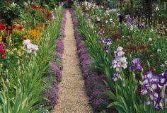 Monet's Garden, Giverny, 1993